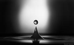 B&w bubble (Hexilene) Tags: macro macrophotographie goutte sigma105mm sigma light black blanc blackwhite noiretblanc