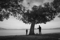 Disagreements (Vangelis Tzertzinis/GDISTUDIO.COM) Tags: sea seascape tree bythesea bwseascape beach kid parent disagreement greece