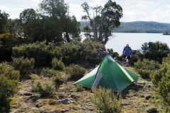 20170301-50-Camp (Roger T Wong) Tags: australia greatpinetier np nationalpark sel1635z sony1635 sonya7ii sonyalpha7ii sonyfe1635mmf4zaosscarlzeissvariotessart sonyilce7m2 tasmania wha wallsofjerusalem worldheritagearea bushwalk camp hike tent trektramp walk