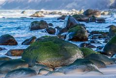 Bemooster Fels - Moss on a rock (ralfkai41) Tags: stone rock moos sand landscape meer nature felsen outdoor balticsea natur sea hdr face beach rügen moss strand bokeh water island wasser rocks ostsee landschaft insel stein