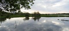 AIGUAMOLLS DE L'EMPORDÀ - PAISATGE (Joan Biarnés) Tags: aiguamollsdelempordà altempordà girona catalunya paisatge paisaje reflexes reflejos 219 panasonicfz1000 castellódempúries
