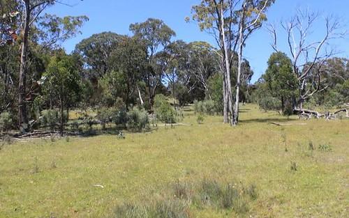 Lot 1 Catarrh Creek Road, Torrington NSW