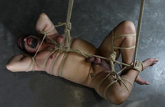m-floor (shibarigarraf) Tags: shibari bondage kinbaku shibarigarraf male rope bound