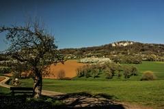 Walberla (Detlef-fv) Tags: berg walberla franken spring frühling