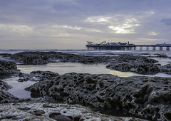 Brighton rocks (sussexscorpio) Tags: brighton rocks seashore sea tide lowtide brightonpier brightonandhove palacepier pier water beach landscape seafront seaside rocky rock seascape texture foreground dusk coast shore rockpool