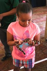 IMG_3475 (U.S. ARMY FORT HUACHUCA) Tags: month arizona army child fort huachuca military momc morale mwr recreation tmac us welfare