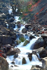 Streaming... (Michael Kalognomos) Tags: canoneos70d ef24105mmf4l landscape greece stream waterfall longexposure water falls river trees forest nature milky rocks mountain