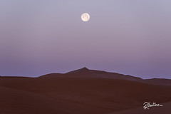 Moonset (Riccardo Maria Mantero) Tags: mantero moonset riccardo maria desert full moon morning morocco sahara travel riccardomantero riccardomariamantero fullmoon