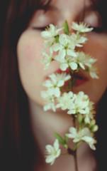 157/365 flores (yanakv) Tags: me yo yanitophotography flor flower flowers 50mmf18stm 50mm 365days 365dias canon eos1200d primavera spring chica girl