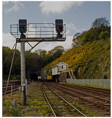 'Always the Sun'...... (peterdouglas1) Tags: class37 directrailservices bangorstation signalboxes 6k41 valleyflasks signals palisade gantries belmonttunnel