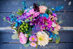 IMG_1769.jpg (tiffotography) Tags: austin casariodecolores texas tiffanycampbellphotography weddingphotogrpahy
