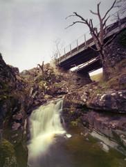 Gogo burn pinhole snaps (wheehamx) Tags: gogo burn waterfall colour pinhole