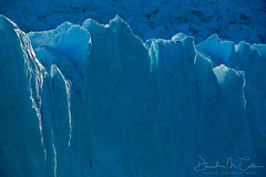 Glacial Goodnight (David M. Cobb) Tags: losglaciaresnationalpark chile ice glacier rimlight frozen globalwarming glacial patagonia southamerica water visipix