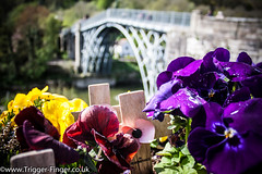 "Ironbridge and Powis Castle • <a style=""font-size:0.8em;"" href=""http://www.flickr.com/photos/32236014@N07/34007218402/"" target=""_blank"">View on Flickr</a>"