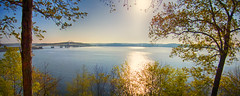 Kentucky Lake (Ricky L. Jones Photography) Tags: landscape landscapephotography weather weatherphotography nature morning sunshine sunrise kentucky kenlake spring springtime colorful trees