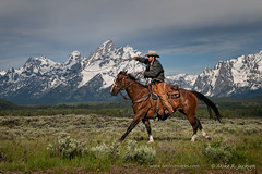 Wrangler-and-the-Mountains (cheroyori) Tags: horse justin spring cowboy hat ranching trianglex wildwest wrangler