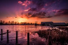 Rising (Žèę Ķ) Tags: golden goldenhour landscape ocean red sea seascape seaside ship vessel yellow boat sunset water evening dusk purple clouds reflection blue dock sunburst rising