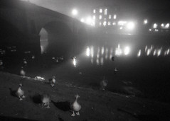 Night Geese on the River Ouse, York (pho-Tony) Tags: lomolcw york fujineopan400 400 iso400 black white blackandwhite bw monochrome lomography lomolcwide lcwide blend 35mm 17mm fullframe halfframe minigon 1 ultrawideangle lens minigon17mm superwide ultrawide rodinal expired