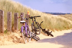 Bicycle Day - four go to the beach (jeannie debs) Tags: bicycleday2017 cycles bikes beach fun sand dunes skies blue golden sunshine grasses millenniumcoastalpath gower peninsula white tyres path coastal sea water outdoors nature reserve