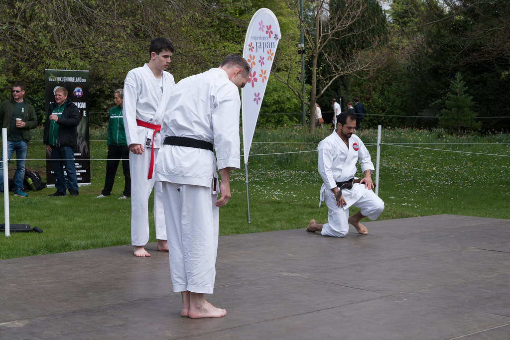EXPERIENCE JAPAN FESTIVAL DAY 2017 [AT FARMLEIGH IN PHOENIX PARK]-127117