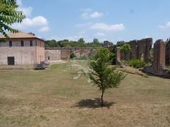 Villa Capo di Bove_22