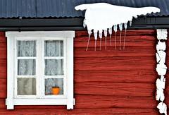 drypp drypp......... (KvikneFoto) Tags: vår spring is ice april 2017 tamron nikon