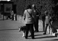 Praktica Super TL +  Helios 44-2 2/58 -  Street Contrasts (Kojotisko) Tags: street city people streets person czech tl streetphotography super brno cc creativecommons czechrepublic streetphoto persons helios helios442258 442pentaconbwfilmpraktica