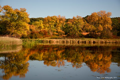 Fall Reflection (djsime) Tags: statepark autumn reflection fall minnesota fallcolor southernminnesota myrebigislandstatepark