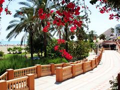Benalmdena (Mlaga) (sky_hlv) Tags: espaa andaluca spain mediterraneo costadelsol mlaga marmediterraneo benlmadena