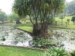 "Parc à Kuala Lumpur <a style=""margin-left:10px; font-size:0.8em;"" href=""http://www.flickr.com/photos/83080376@N03/15178279400/"" target=""_blank"">@flickr</a>"