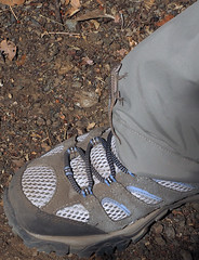 Leg up (LeftCoastKenny) Tags: pants lizard trail ranchosanantonio