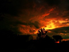 IMG_5174.JPG (Jamie Smed) Tags: house sky glow rooftop home phoneography silhouette love roof iphoneedit iphoneography mobileography beautiful nature rural sun drama peaceful beauty evening emotion snapseed fire red light vignette orange iphone5s yellow jamiesmed sunset mextures gold trees app handyphoto 2014 hdr autostitch tree geotagged geotag skies dark facebook iphonephoto landscape cincinnati