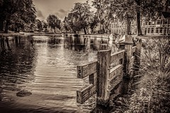 The water's edge (McQuaide Photography) Tags: autumn holland haarlem water netherlands monochrome sepia canon wow eos mono europe herfst nederland wideangle handheld dslr toned hdr lightroom uwa wideanglelens ultrawideangle tonemapped photomatixpro 100d 1018mm mcquaidephotography