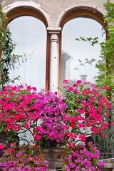 Asolo (Vicenza Italy) (memo52foto) Tags: italien flowers italy flower window europa europe italia fenster eu finestra fiori italie fenetre vicenza ue asolo veneto caterinacornaro