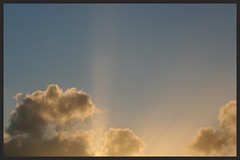 Sunset rays (Zelda Wynn) Tags: sunset weather skyscape golden auckland rays cloudscape crepuscularrays atmosphericoptics sunpillar troposphere artgalleryofnewsouthwales inspiredbyalfredstieglitz weatherwatch zeldawynnphotography
