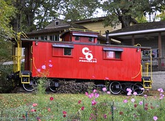 St. Albans, West Virginia (Bob McGilvray Jr.) Tags: wood railroad flowers red fall home train fence private wooden backyard tracks caboose westvirginia co residence stalbans chesapeakeohio