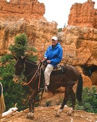 Tin Man (bluegrass0839) Tags: canyon national hoodoo bryce zion zionnationalpark brycecanyon nationalparks narrows hoodoos horsebackride parkthe