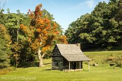 PARKWAY CABIN (PHOTOGRAPHY bydamanti) Tags: autumn house building tree fall cabin northcarolina blueridgeparkway