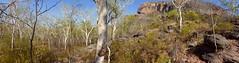 A day in the Kakadu National Park (Bryn Pinzgauer) Tags: park vacation sky holiday art rock scenery nt australia tourist national kakadu aboriginal northern territory ubirr nourlangie mirrai
