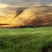 03 SUNSET WALK_Mike Brankin.jpg