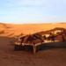 Sunrise Dunes of Merzouga_8311