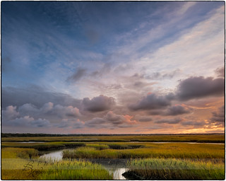 Over the marsh...
