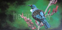 Prince of the Forest (Louise Williams Artist) Tags: new bird painting native zealand tui