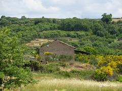 Águas Frias (Chaves) - ... isolada no meio da vegetação ... (Mário Silva) Tags: portugal natureza chaves aldeia trásosmontes ilustrarportugal águasfrias lumbudus