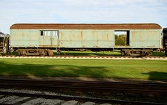 Ever seen a baggage car weed ? (Chicago Rail Head) Tags: heavyweight mothernature monticellorailwaymuseum wildweed baggagecar newyorkcentral npcs railwayexpress clerestorycoachusstock shipitbyrail