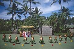 Hawai'i 1997 (patrikmloeff) Tags: world show voyage travel girls usa holiday beautiful america island hawaii vacances dance reisen women holidays ukulele state pacific oahu earth urlaub insel american tanz terre voyager honolulu traveling monde amerika ferien aloha reise kapiolani frauen welt erde amerikanisch kapiolanipark pazifik inseln kodakhulashow thegatheringplace verreisen grasrock inselkette dersammelpunkt grasrcke