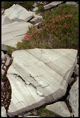 slabs (fchemotti) Tags: washington northcascades delcampopeak gothicbasin rock kodakretina kodakektar100