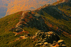 Franconia: The great wall (Shahid Durrani) Tags: park new state franconia hampshire ridge notch