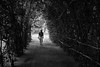 Strolling (stevenp74) Tags: white man black garden sony spice 40mm voightlander stroll a7