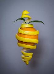 Juice (Raggedjack1) Tags: orange fruit lemon juice citrus citrusfruit